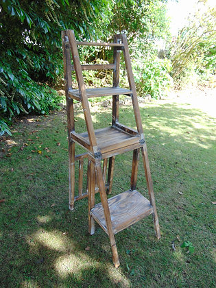 Metamorphic Step Ladder