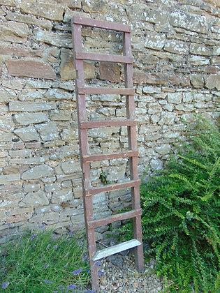 Rustic 8 Rung Ladder