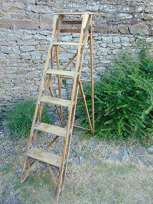 Hatherly Step Ladder