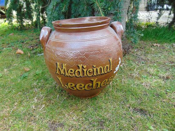 Medicinal Leeches Earthen Ware Pot