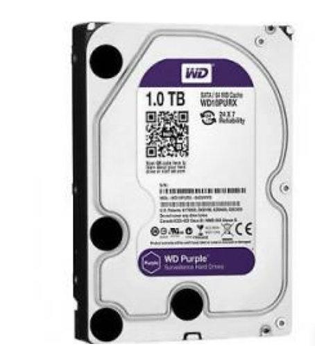 Disco duro western 1TB purple