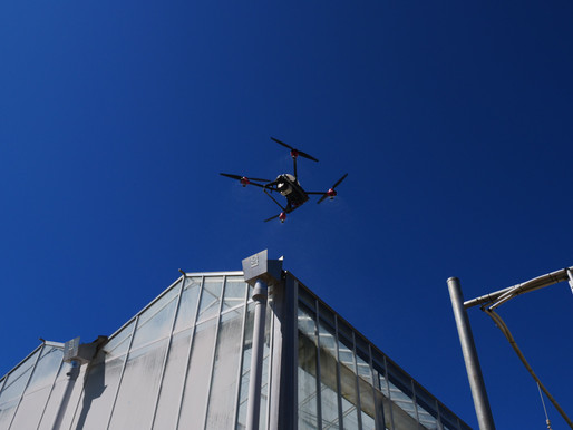 XAG Deploys Drones for Whitewash for Green House