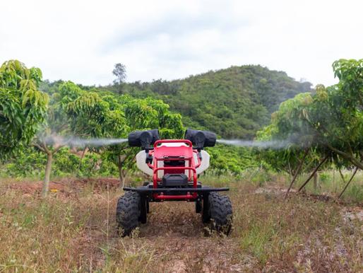 Self-driving Robot to Solve Ecuador Mango Problem