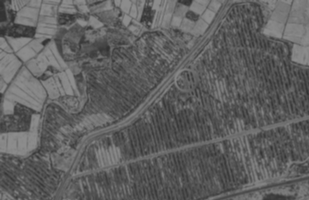 Black and white top view farm