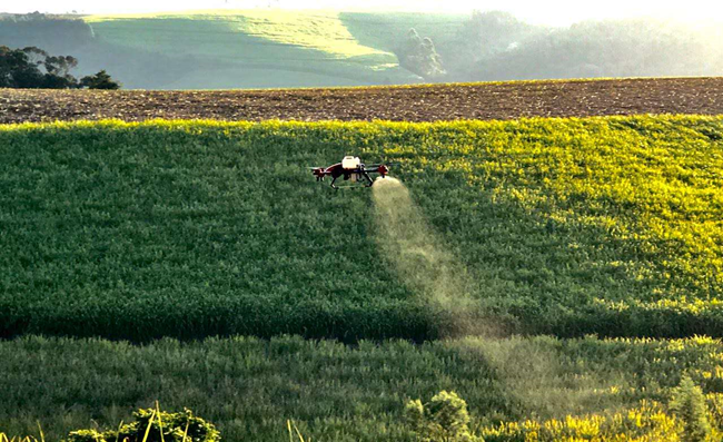 XAG P Series drone on the work of sugarcane ripening in SA