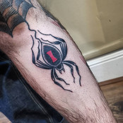 Traditional Spider