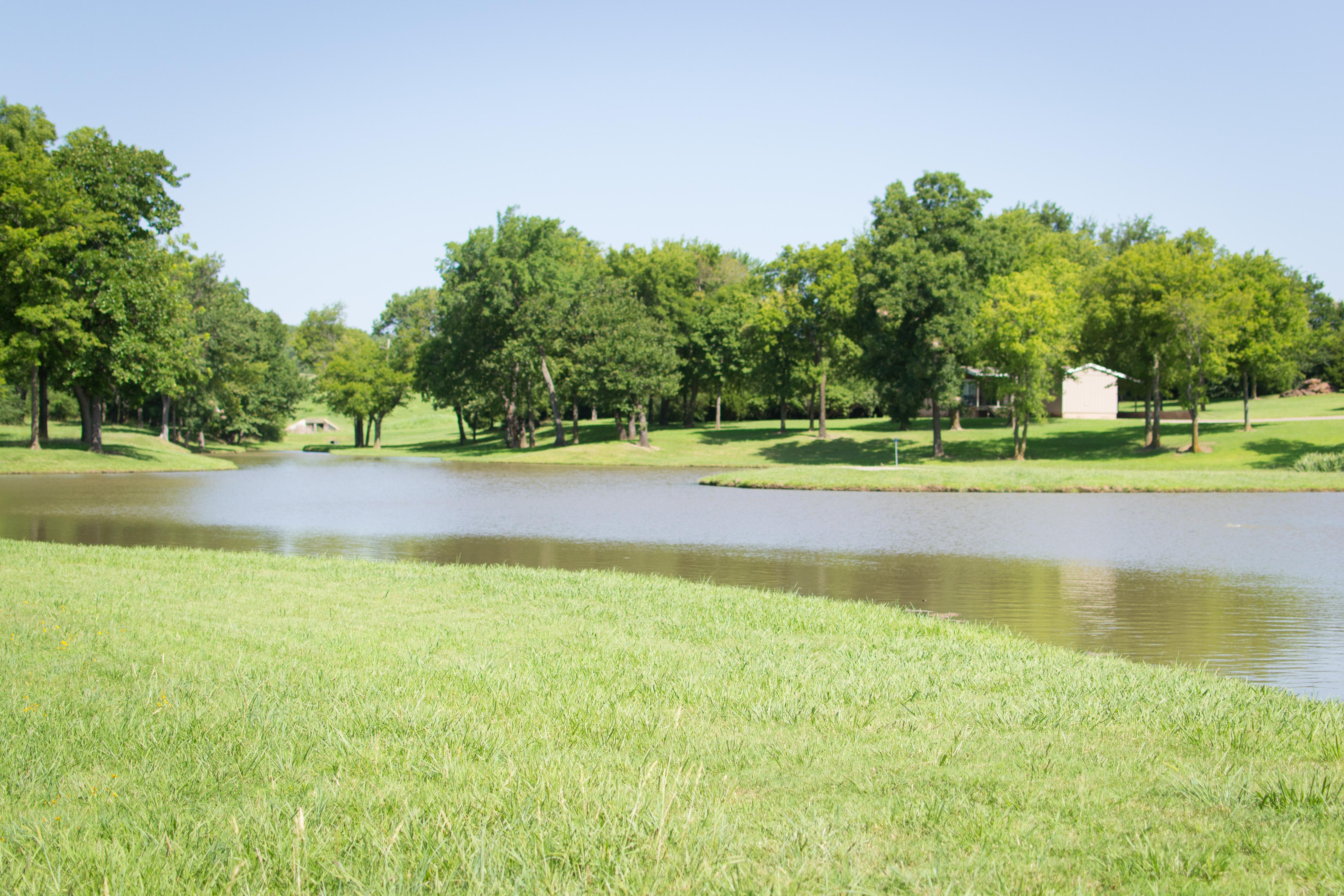 Spring Fed Ponds