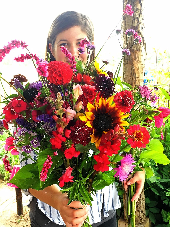 IMG_7714bos bloemen_edited