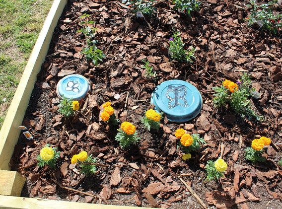Garden 14