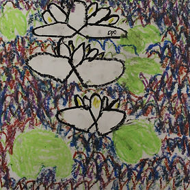 Patrick - Waterlilies.jpg