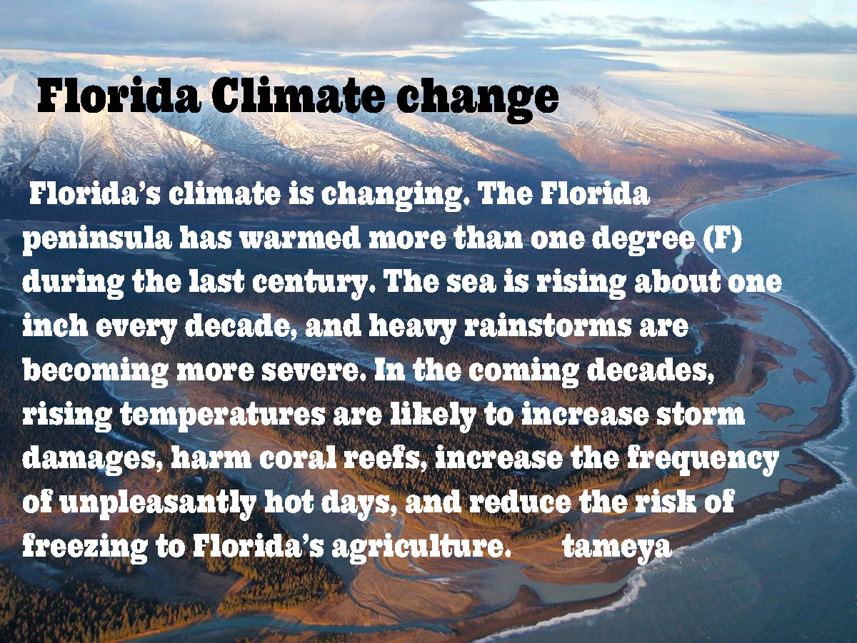 P-1_Global Warming_Page_02.jpg