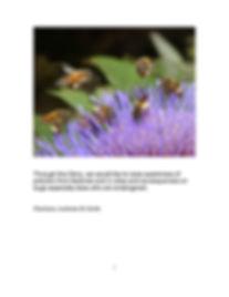 2A petite abeille_Page_2.jpg