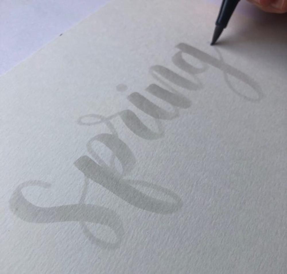 Light Grey Brush Lettered Word