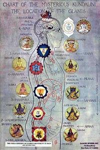 Kundalini-chart.jpg
