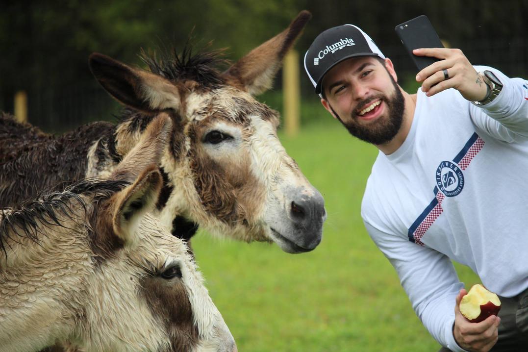 Donkey Selfies