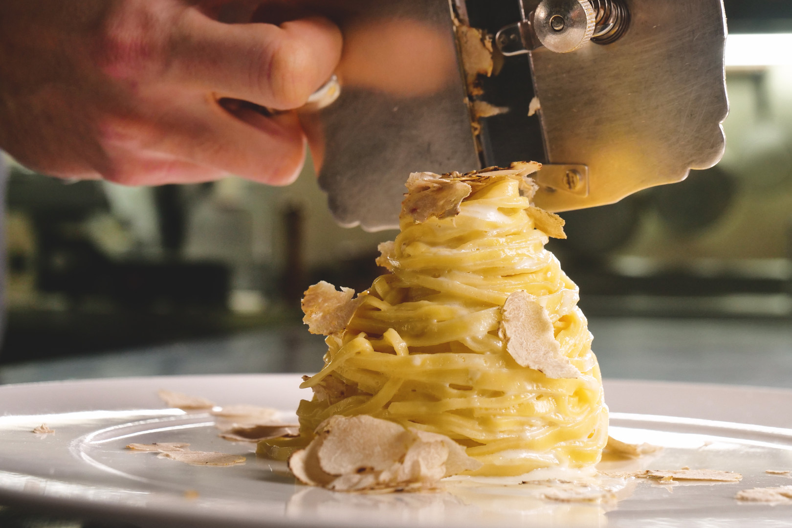 Egg pasta dish, typical Italian, with fi