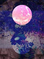 Lauren M 10 copy.jpg