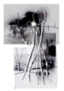 Roots 6.jpg