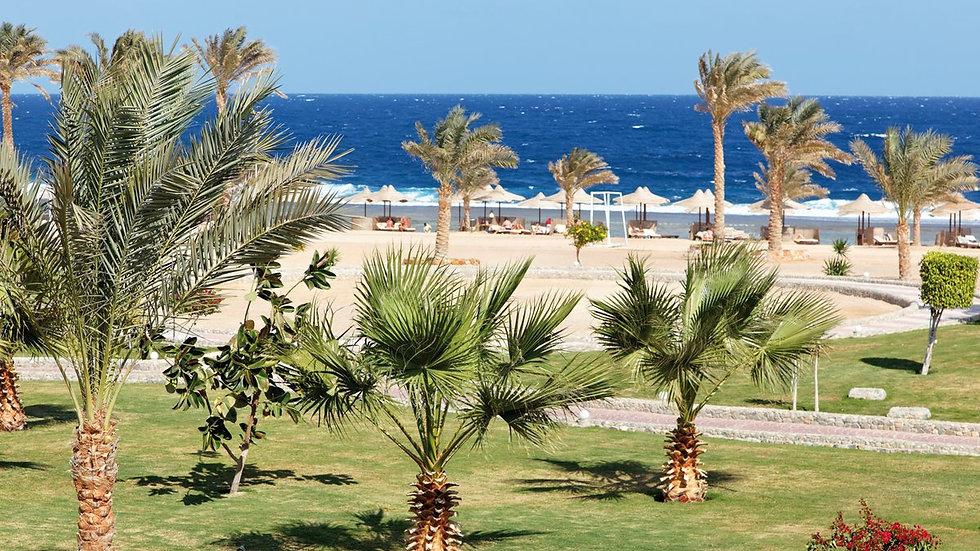 Three Corners Sea Beach Resort 4*