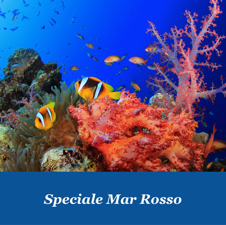 Speciale Mar Rosso