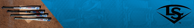 LS BANNER.png