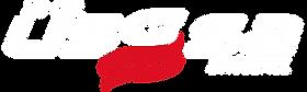 usssa logo copy.png
