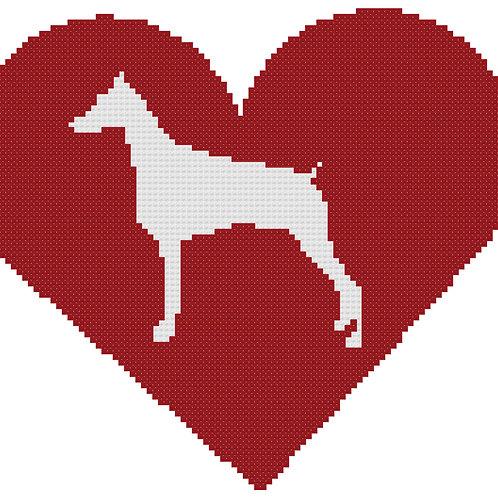 Doberman Pinscher in Heart