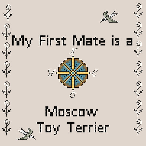 Moscow Toy Terrier, My First Mate is a