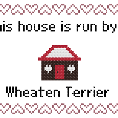 Wheaten Terrier, This house is run by