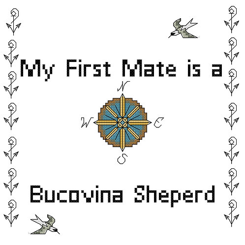 Bucovina Shepherd, My First Mate is a