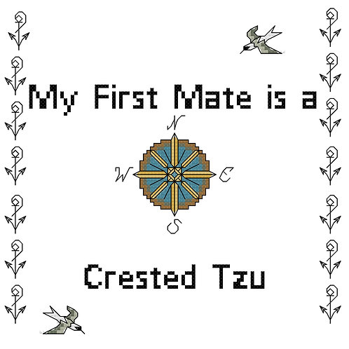 Crested Tzu, My First Mate is a