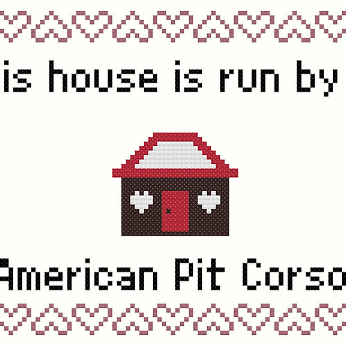 American Pit Corso, This house is run by