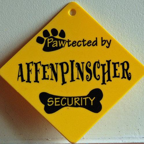 Affenpinscher, Pawtected by Doberman Security