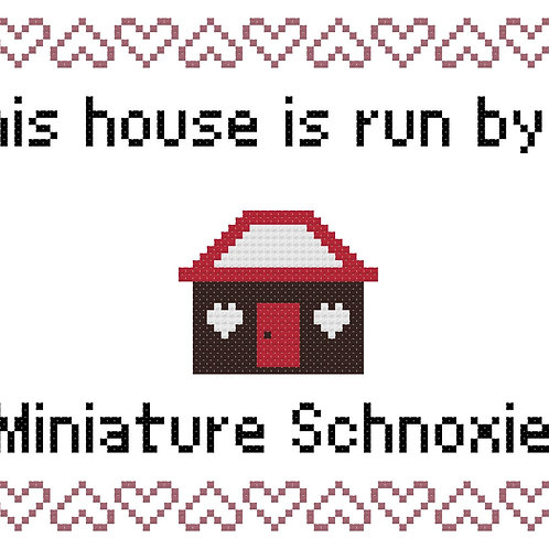 Miniature Schnoxie, This house is run by