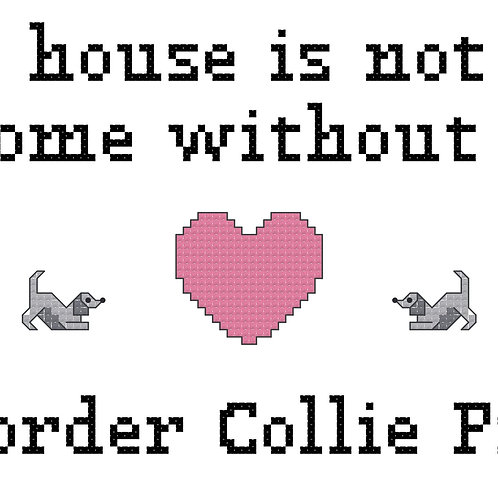 Border Collie Pit, A House is Not a Home Without