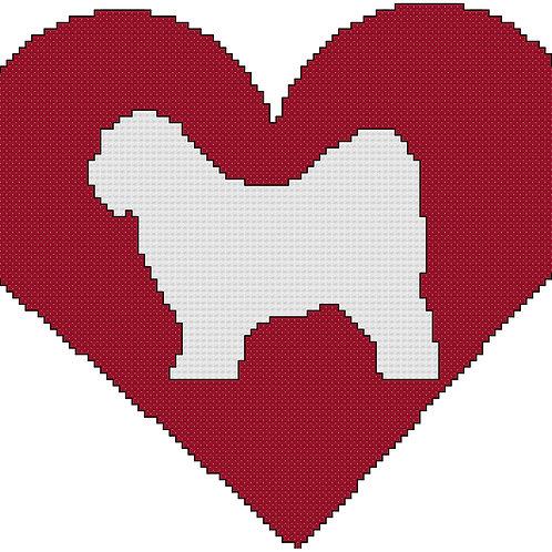 Tibetan Terrier in Heart