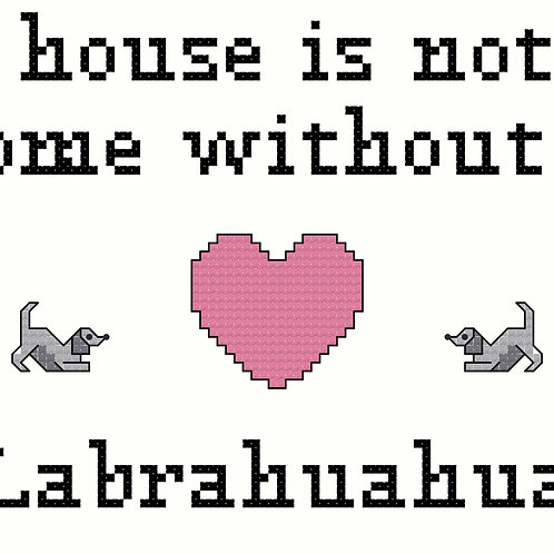 Labrahuahua, A House is Not a Home Without