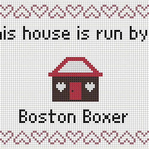 Boston Boxer, This house is run by