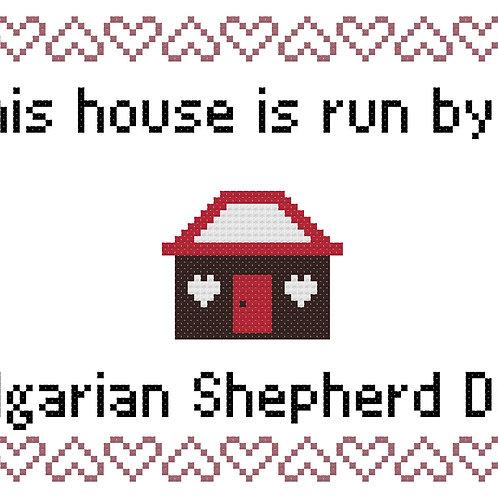 Bulgarian Shepherd Dog, This house is run by