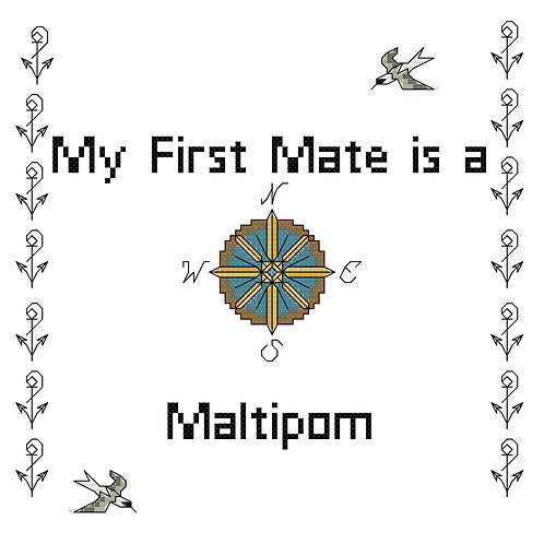 Maltipom, My First Mate is a