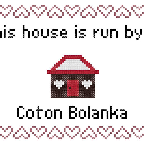 Coton Bolonka, This house is run by