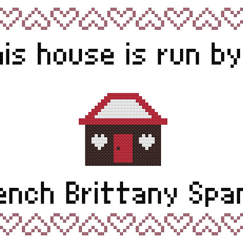 French Brittany Spaniel, This house is run by