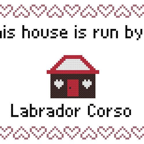 Labrador Corso, This house is run by