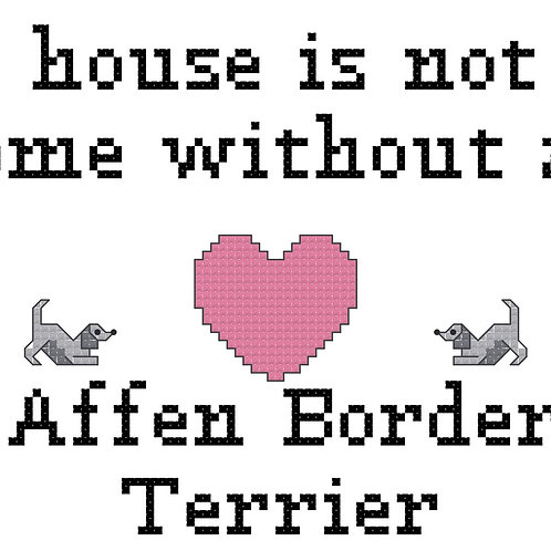 Affen Border Terrier, A House is Not a Home Without