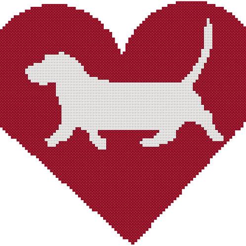 Basset Hound in Heart