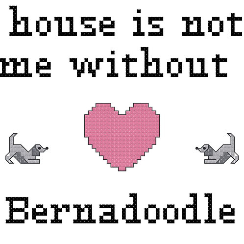Bernadoodle, A House is Not a Home Without