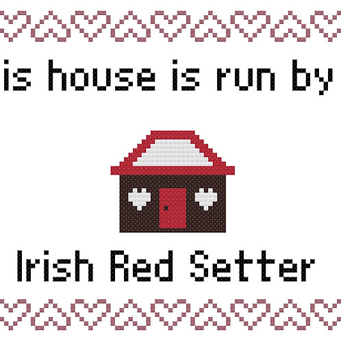 Irish Red Setter, This house is run by