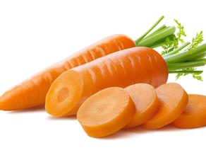 Carrot (Daucus carota) Trivia