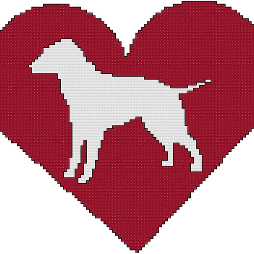 Curly Coated Retriever in Heart