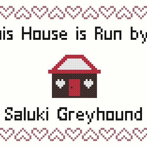 Saluki Greyhound, This house is run by